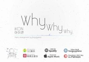 iKON「Why Why Why」钢琴版