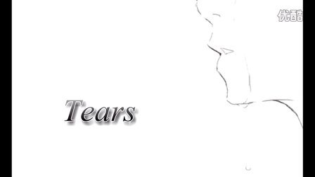 tears 超经典好听唯美钢