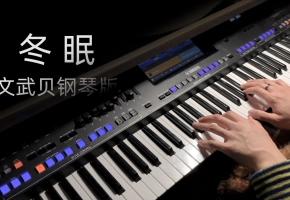 【钢琴】冬眠(文武贝钢琴版)