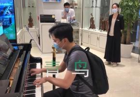 木叶飞舞之处,火亦生生不息,钢琴改编演奏《青鸟》,小姐姐激动了!