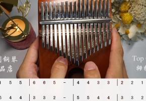 第二课《小星星》 Top ONE拇指琴