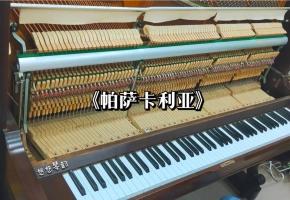 【钢琴】把钢琴拆开来演奏会是什么样的体验呢?《帕萨卡利亚》