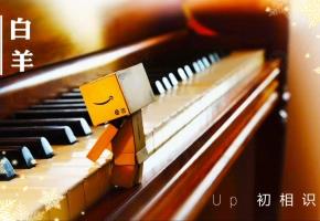 《白羊》完美还原钢琴版—UP倾情献唱~