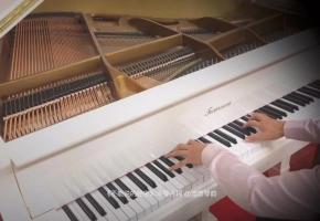 【钢琴】《不能说的秘密》斗琴片段,逐渐加快的旋律将撼动您的听觉!