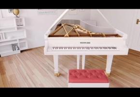 【钢琴】雨后初晴(作曲:文武贝)