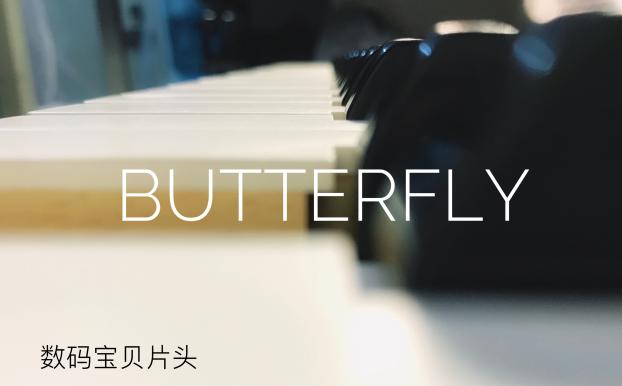 butterfly-数码宝贝op