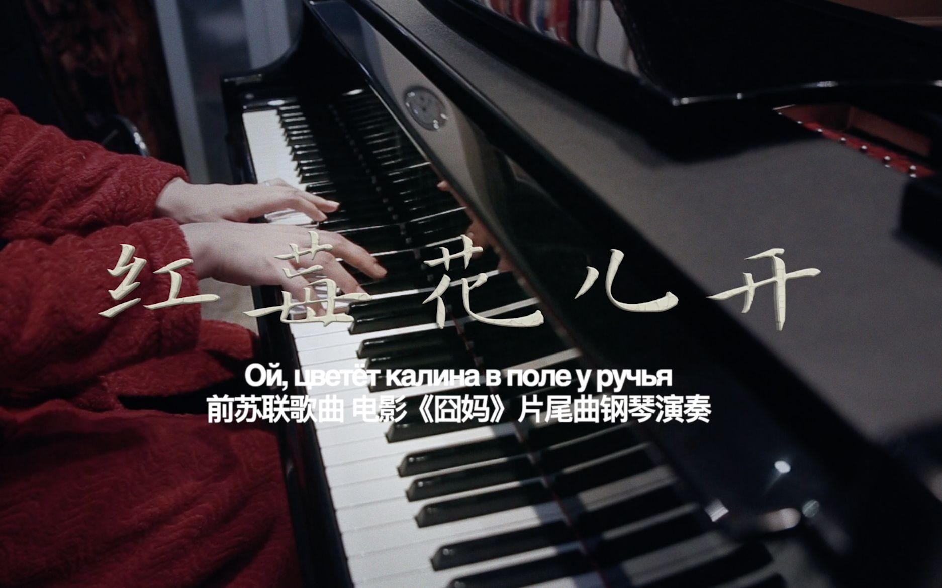 【昼夜钢琴】红梅花儿开-电影《囧妈...