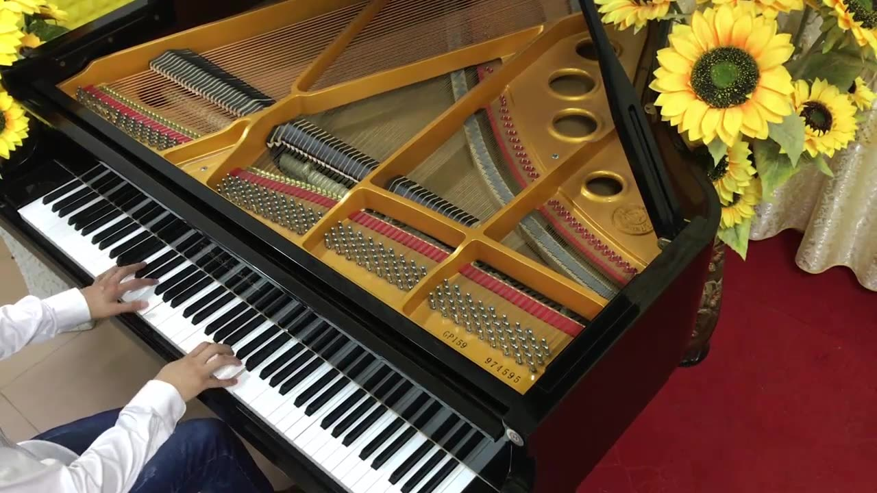 动漫音乐《名侦探柯南主题曲》(悠悠琴韵二次元音乐钢琴演奏