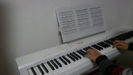 卡农原版钢琴曲 Variat