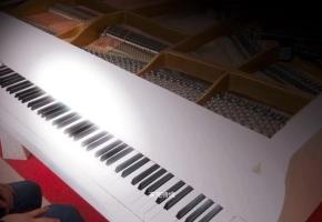 【钢琴】马克西姆《出埃及记》,铿锵有力,振奋人心,有多少人想驾驭它呢?